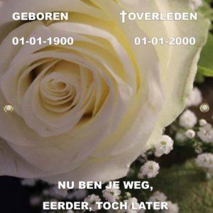 Tijdelijke grafdoek met witte roos. HB-Grafdoeken onderdeel van HB-Creations Tilburg.