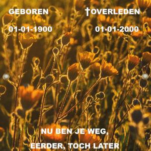 Tijdelijk grafdoek met een avondschemrering over bloemenveld. HB-grafdoeken onderdeel van HB-Creations uit Tilburg (Reeshof).